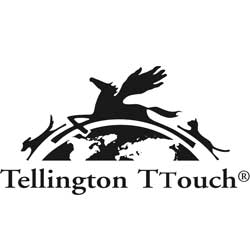 Tellington TTouch Practitioner