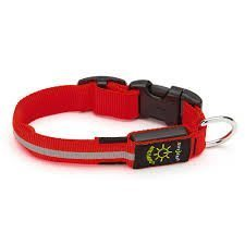 Nite Dawg Light-Up LED Dog Collar