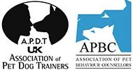Dog trainer and behaviour specialist with accreditations in Surrey