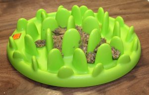 Green Mini Interactive Feeder Bowl for Cats